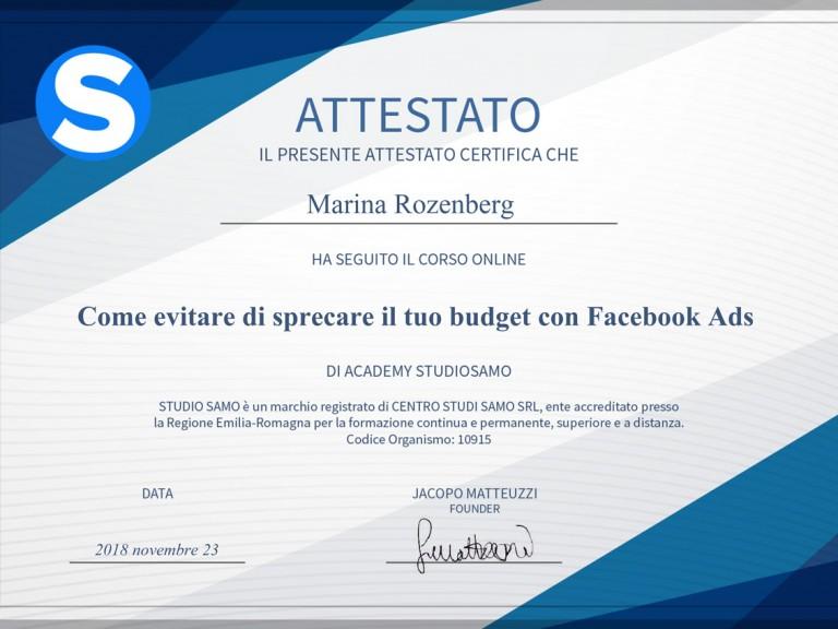 BUDGET-FB-ADS